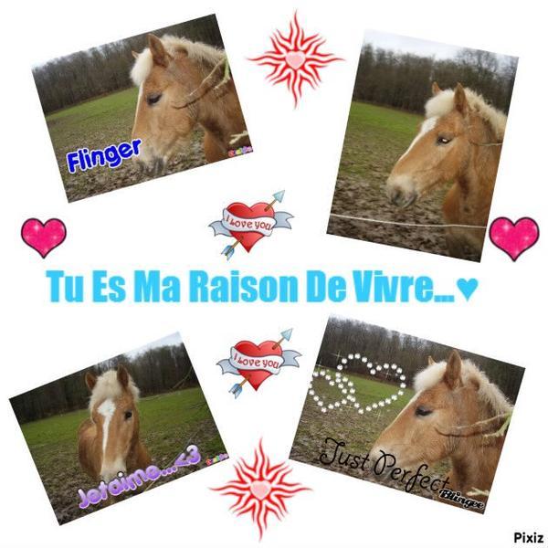 Ma Raison De Vivre, C'est Toi...♥