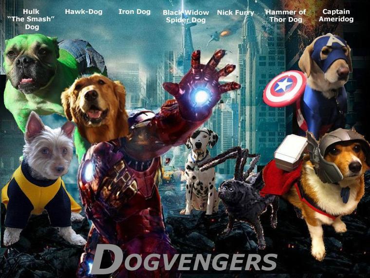 Les Avengers sont partit en vacances ont dirait