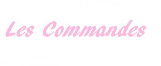 Les Commandes