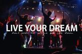 Follow your dreams !