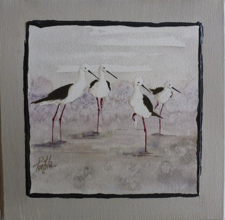 Les échasses blanches