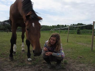 """""""Il n'y a pas de secrets aussi intimes que ceux d'un cavalier et de son cheval."""""""
