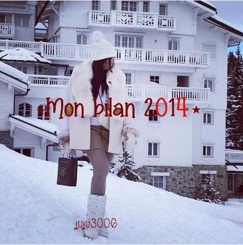 Mon bilan 2014. ♥