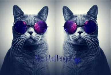 ♫ Mes challenges ♫