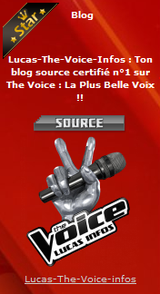 Ta source The Voice est Blog Star ! Merci ♥♥
