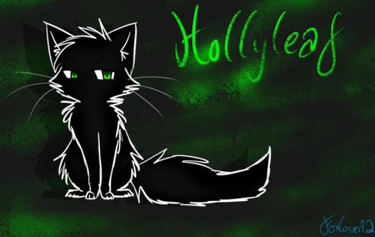 Hollyleaf's Story - L'Histoire de Feuille de Houx (Traduction)