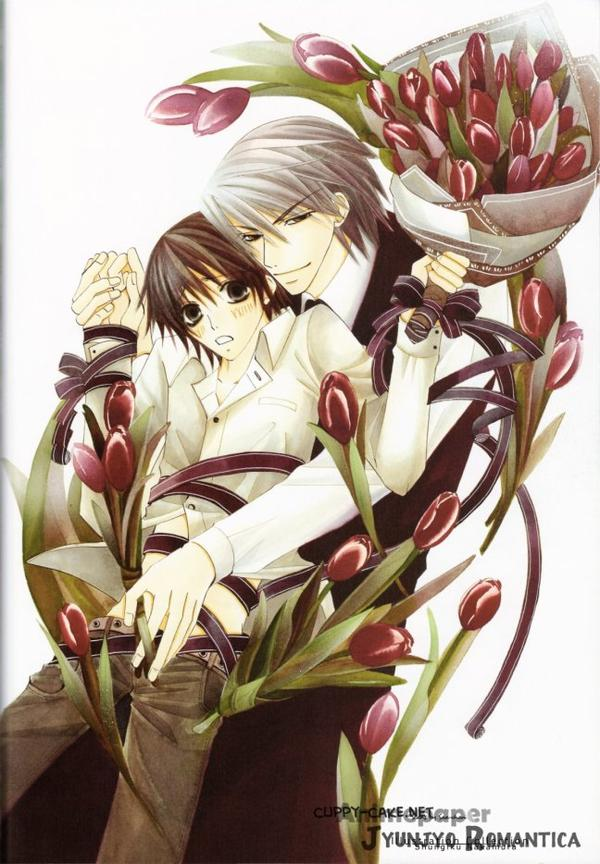 ♥ Junjou Romantica ♥