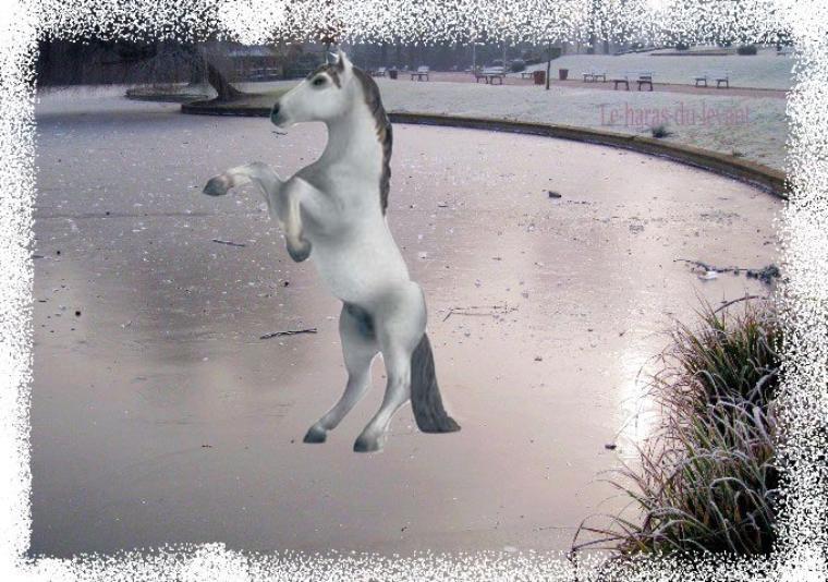 Orelsan aime le patin sur glace....