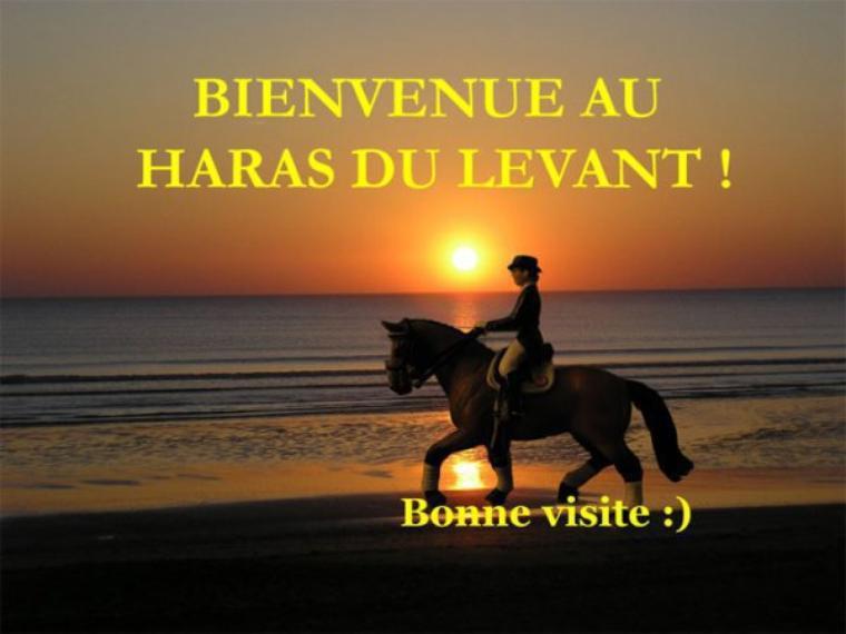 Bienvenue et bonne visite ♥