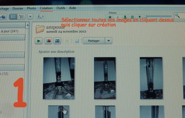 Pas à pas sur picasa pour Nanoufleurs 2011