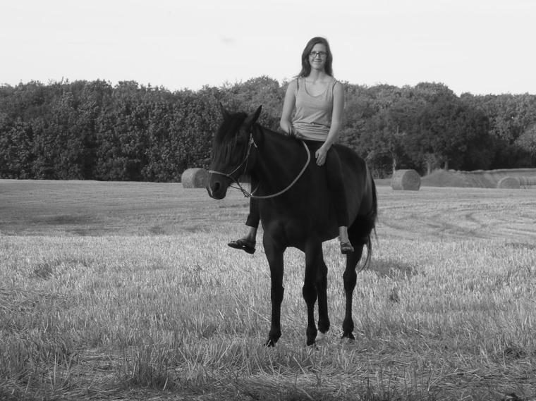 """Lundi 27 Aout: """"L'air du paradis est celui qui souffle entre les oreilles d'un cheval"""""""