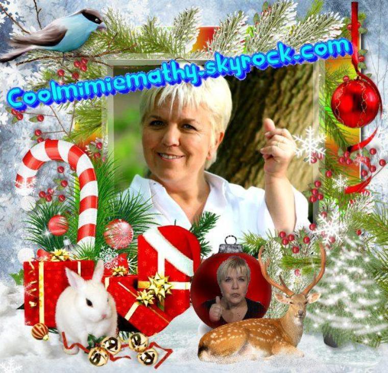 Article Blog Coolmimiemathy Joyeux Noël et bonne année 2012