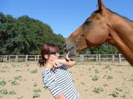 Tu es pas un cheval ordinaire mais mon cheval extraordinaire ♥