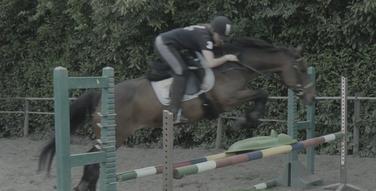 _ Un seul cheval vous manque ... _