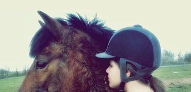 C'est l'élégance simple d'un cheval qui nous charme.