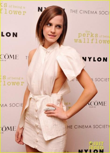 "Emma Watson dans la peau de "" Cendrillon"" ?"