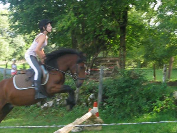T'euskal , mon poney d'Amour !