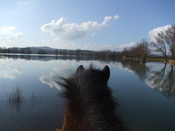 Ballade au lac