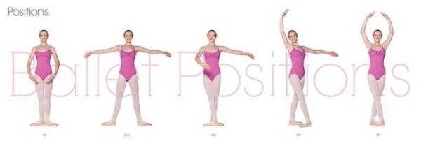 Technique : les bases #1 - Les 5 positions