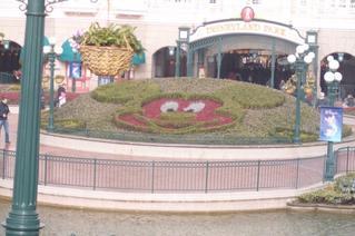 Disneyland (l)