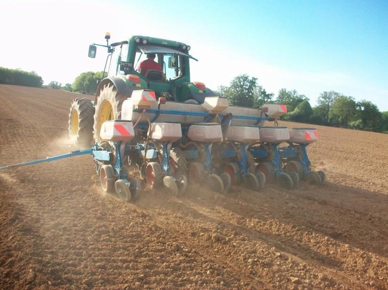 Semi Maïs 2012