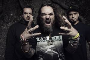 ✠... Cavalera Conspiracy - Insane [Official Lyric Video] | Napalm Records …✠
