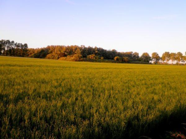 La campagne et ses paysage (L)
