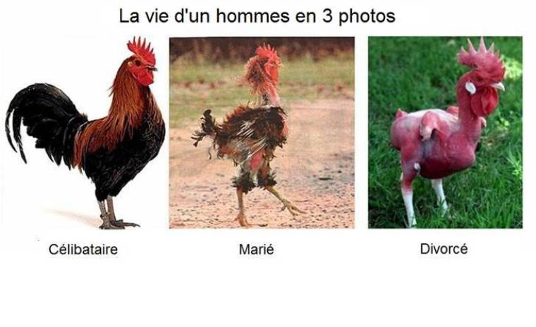 la différence..homme-femme ..!