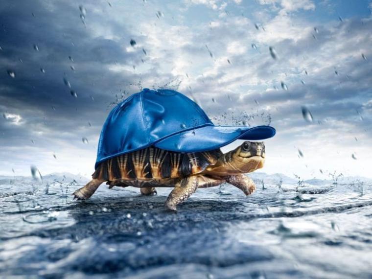 çà y est... il pleut sur Nantes ..!