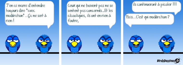 birds 01