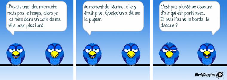 les bleus 01