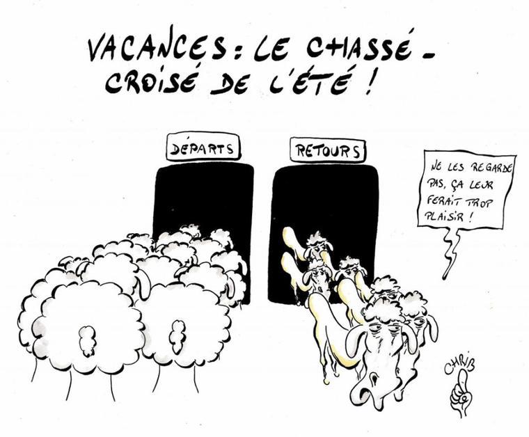 dessins humoristiques politique