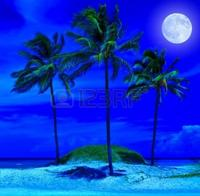 nuit de rêve sur la terre des Réunionnais