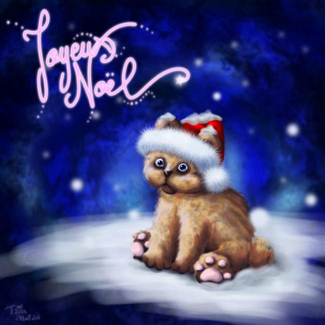 Joyeux Noël 2011 !