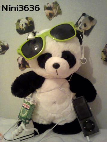 Je vais devenir éduquatrice de pandas je crois...xD #I'm NOT crazy...
