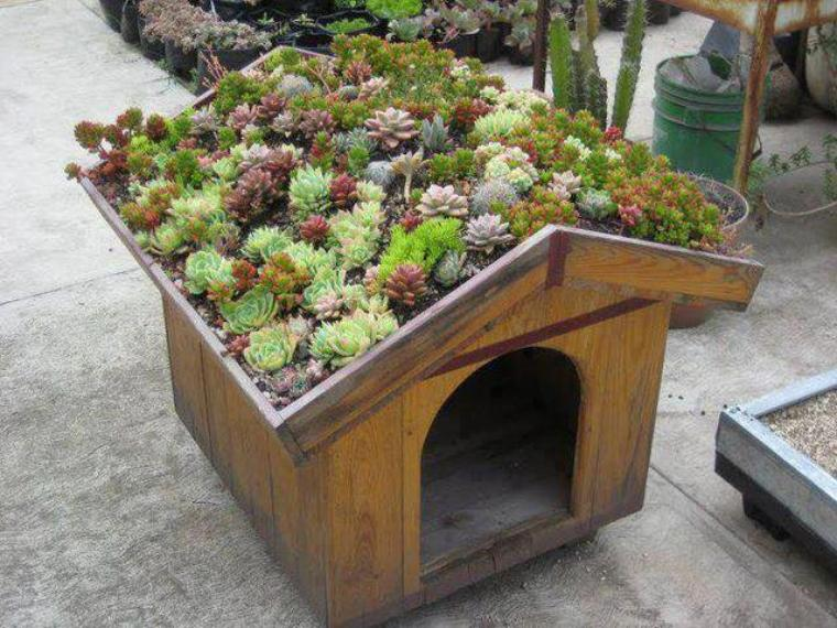 niche et toit fleuri
