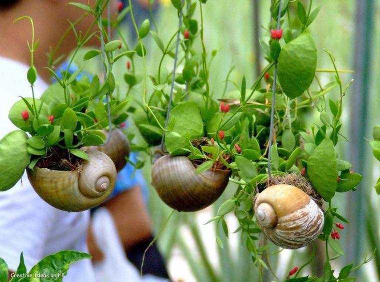 deco coquilles d'escargots pots de fleurs