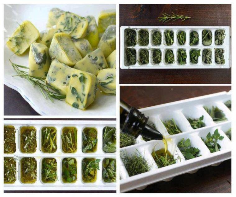 glaçons d'herbes aromatiques et huile d'olive