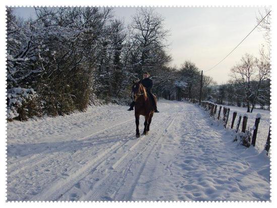 Une petite balade dans la neige