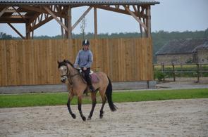 Super poney !