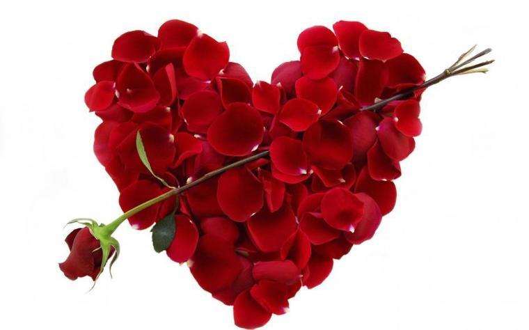 Joyeuse St Valentin à tous et à toutes !