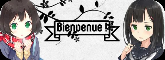 Bienvenue sur mon blog ! Sommaire et rêgles !