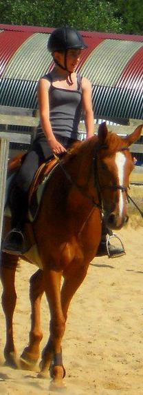 « Il n'y a pas de secrets aussi intime que ceux d'un cheval et de son cavalier. »