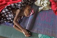 Aide humanitaire : corne de l'Afrique