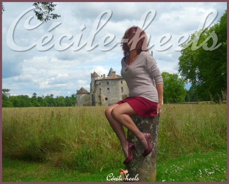 Le château de La Brède.
