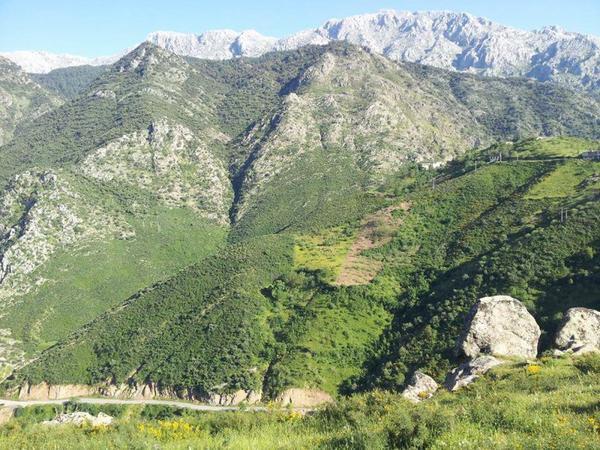 La montagne kabyle : mon lieu de vie et source d'inspiration littéraire