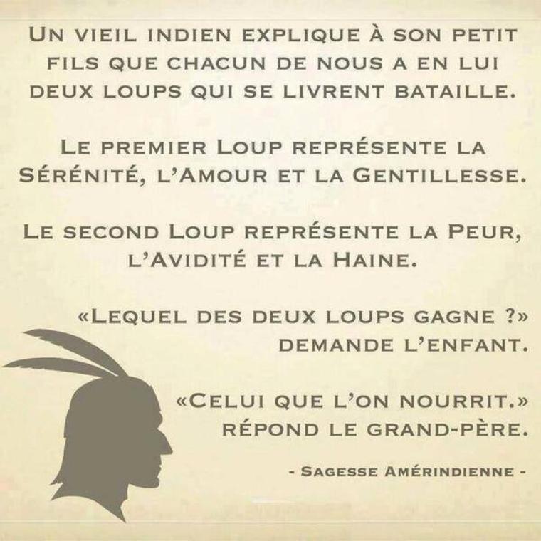- sagesse amérindienne -