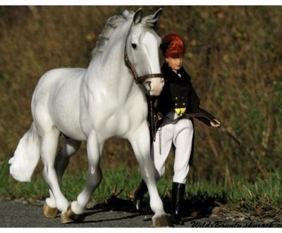 """"""" Taper dans un ballon ne vaudra jamais les moments de bonheurs que l'ont peut avoir avec un cheval """" ♥"""