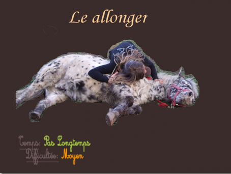 Le allonger