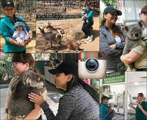 🐨 Eva & Santiago sont au Currumbin Wildlife Sanctuary. 15 Septembre 2018. Currumbin, Australie. Tenue: Eva porte une Casquette Adidas, des Lunettes Victoria Beckham à 415¤ & des Baskets Adidas.